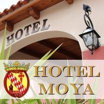 Hotel Moya Hotel en plena Ruta del Camino de Santiago desde Sevilla - Monesterio (Badajoz)