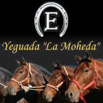 Yeguada la Moheda - Navalvillar de Pela (Badajoz)