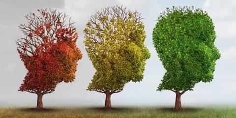 Federación de Asociaciones de Familiares de Enfermos de Alzheimer de Extremadura