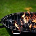 Energía de la Dehesa. Briquetas Térmicas ecológicas para Barbacoas.