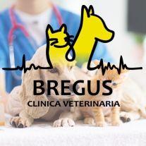 Clinica Bregus. Tienda online para mascotas. Productos para animales. Alimentación y Cuidado.