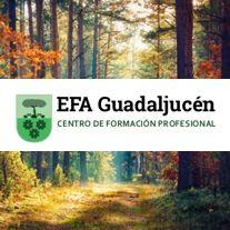 EFA Guadaljucén. Centro de Formación Profesional. Mérida (Badajoz)