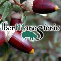 Ibermonesterio Tienda Online de Productos ibéricos - Monesterio (Badajoz)