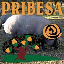 Pribesa Tienda Online de Productos del Cerdo Ibérico - Monesterio (Badajoz)